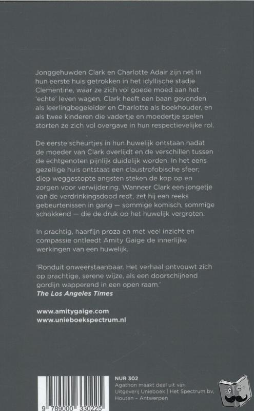 Gaige, Amity - Alledaagse wanen - POD editie