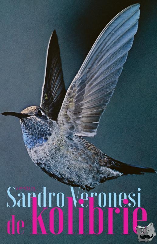 Veronesi, Sandro - De kolibrie