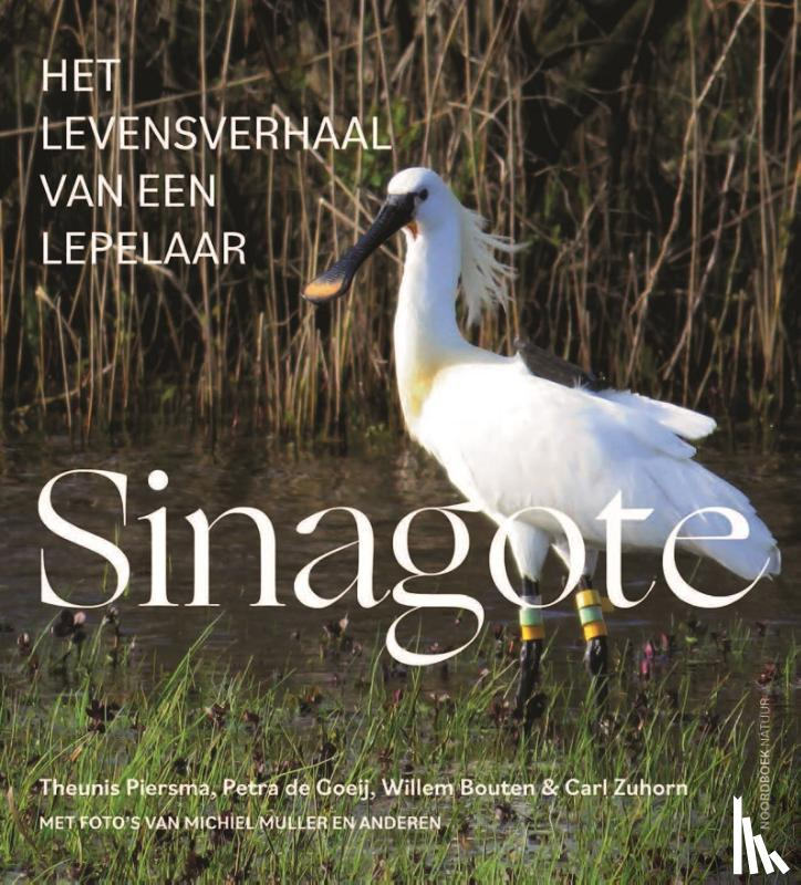 Piersma, Theunis, Goeij, Petra de, Bouten, Willem, Zuhorn, Carl - Sinagote
