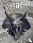 McDougall, Jill - Fossils (Gold A) NF