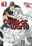 Shimizu, Akane - Cells at Work! 2