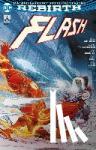 Williamson, Joshua - Flash - Bd. 4 (2. Serie): Rogues Reloaded