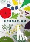 Hildebrand, Caz, Degen, Heinrich - Herbarium