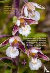 Kreutz, C.A.J. - Orchideeën van de Benelux