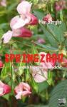 Berghs, Han - SPRINGZAAD - POD editie